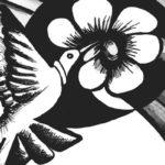 Las láminas de Martha Lucía