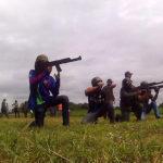 Venezuela, zona de frontera: Milicias Bolivarianas a media hora de Arauca